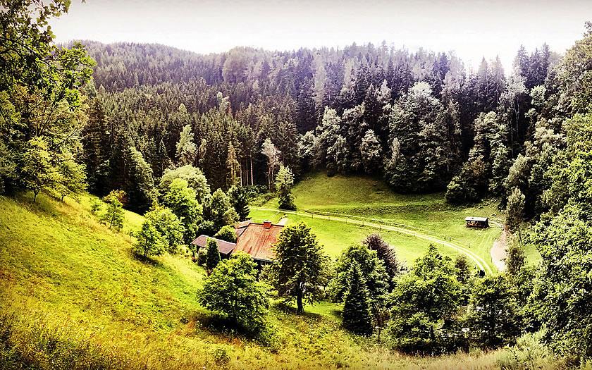 Artfarm in Styria