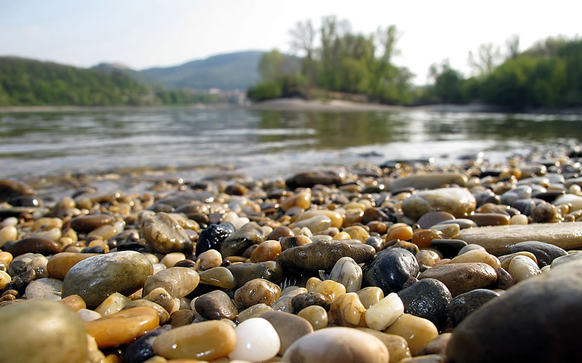 The banks of the Danube in the Donau-Auen National Park