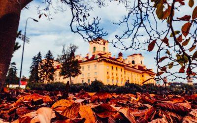 The Autumn Gold Festival in Eisenstadt