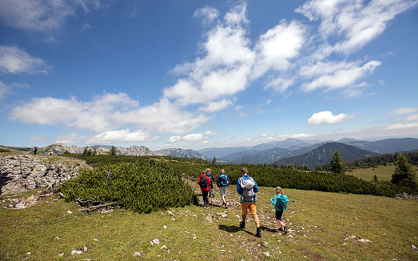 Easy hiking on the Aflenzer Bürgeralm in Styria