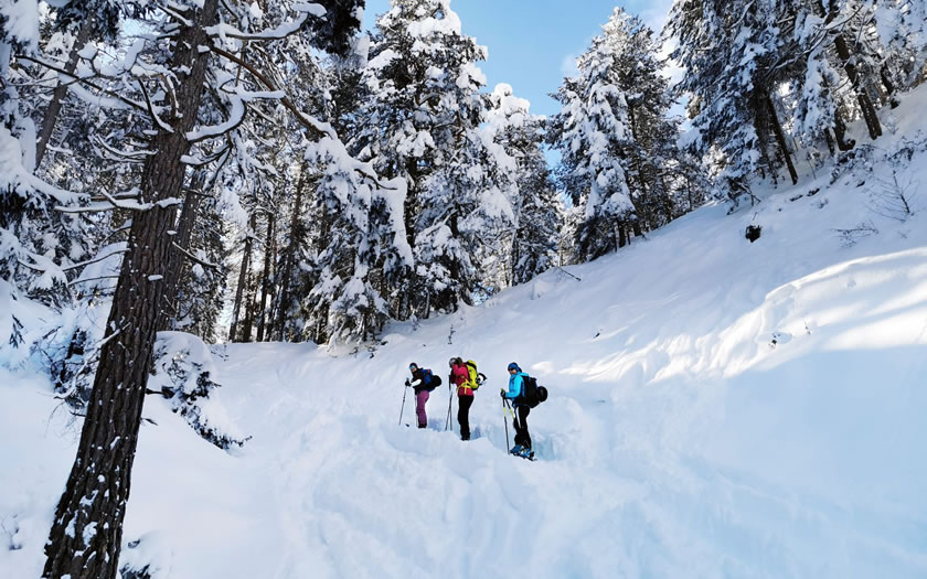 Ski touring near Imst