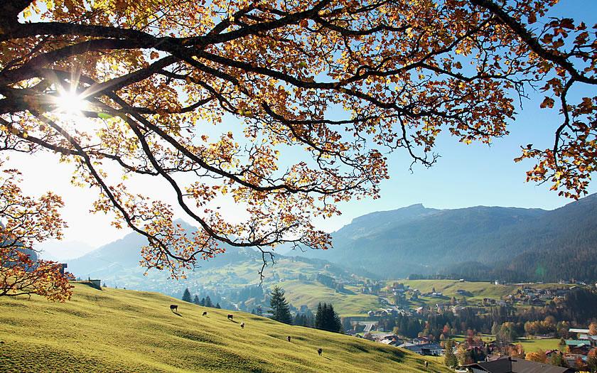 Autumn in the Kleinwalsertal region of Vorarlberg