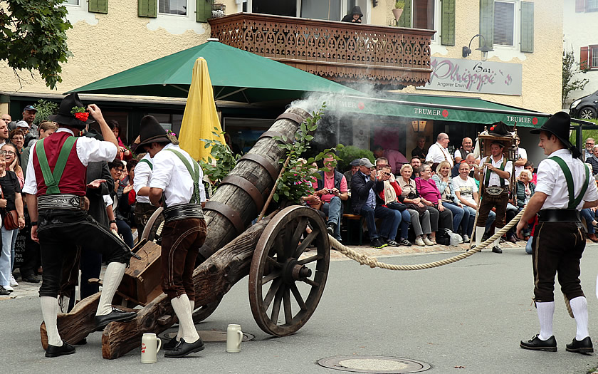Traditional cannon fire during the Almabtrieb celebrations in Kössen