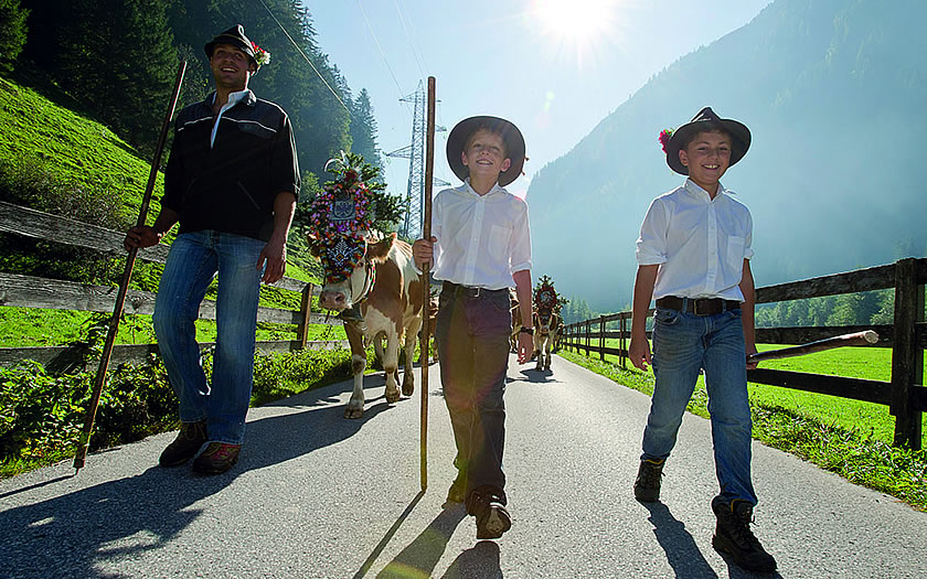 The traditional Almabtrieb in Mayrhofen