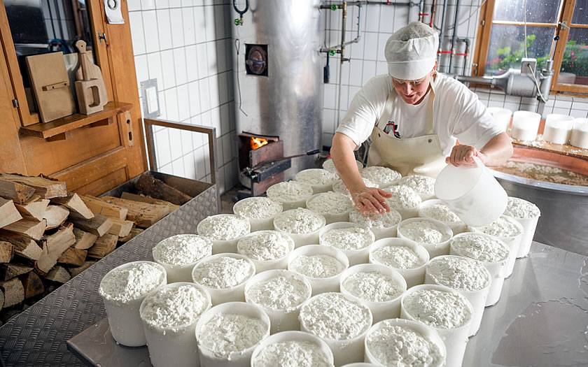 Sura Kees production on the Alpe Nova