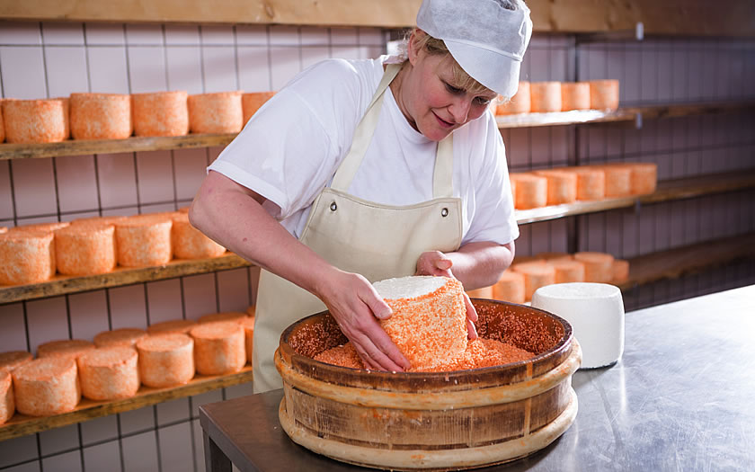 Sura Kees cheese from the Montafon region