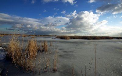 Winter ice on the Neusiedler See