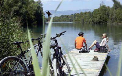 Cycling the Rhine in Vorarlberg