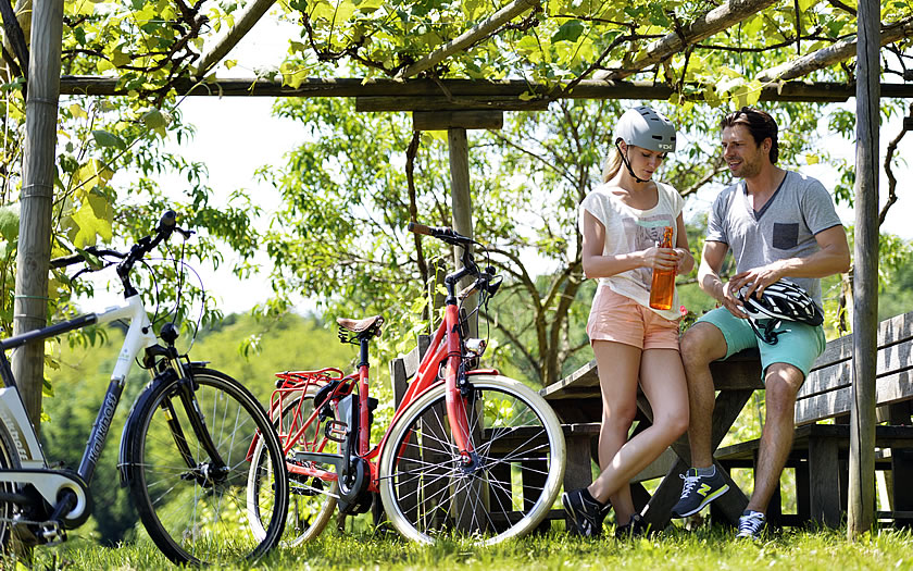 E-biking the Paradise Route in southern Burgenland