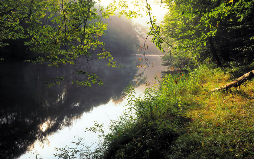 The Thaya river in the Waldviertel region of Lower Austria