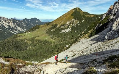 The Southern Alps Panorama Trail