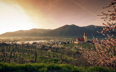 Springtime in the Wachau valley near Vienna