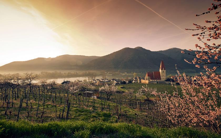 Springtime in the Wachau valley near Vienna