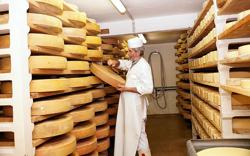 Looking after the cheese at the Schönangeralm in the Wildschönau valley